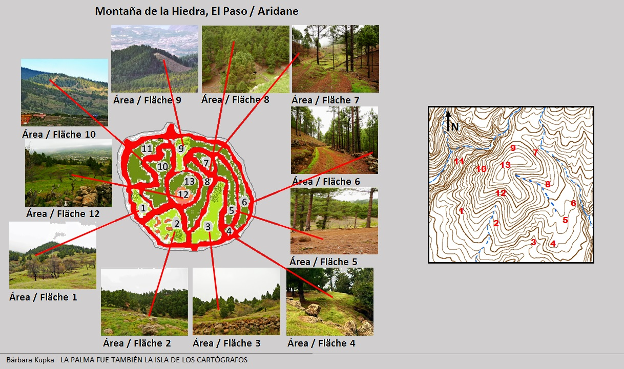 Felsgravuren von La Fajana stellen Landschaftselemente dar.