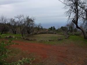 Llano de Cruz, Tijarafe