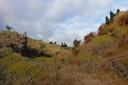 Der Caboco von El Verde im Barranco de Tenisca